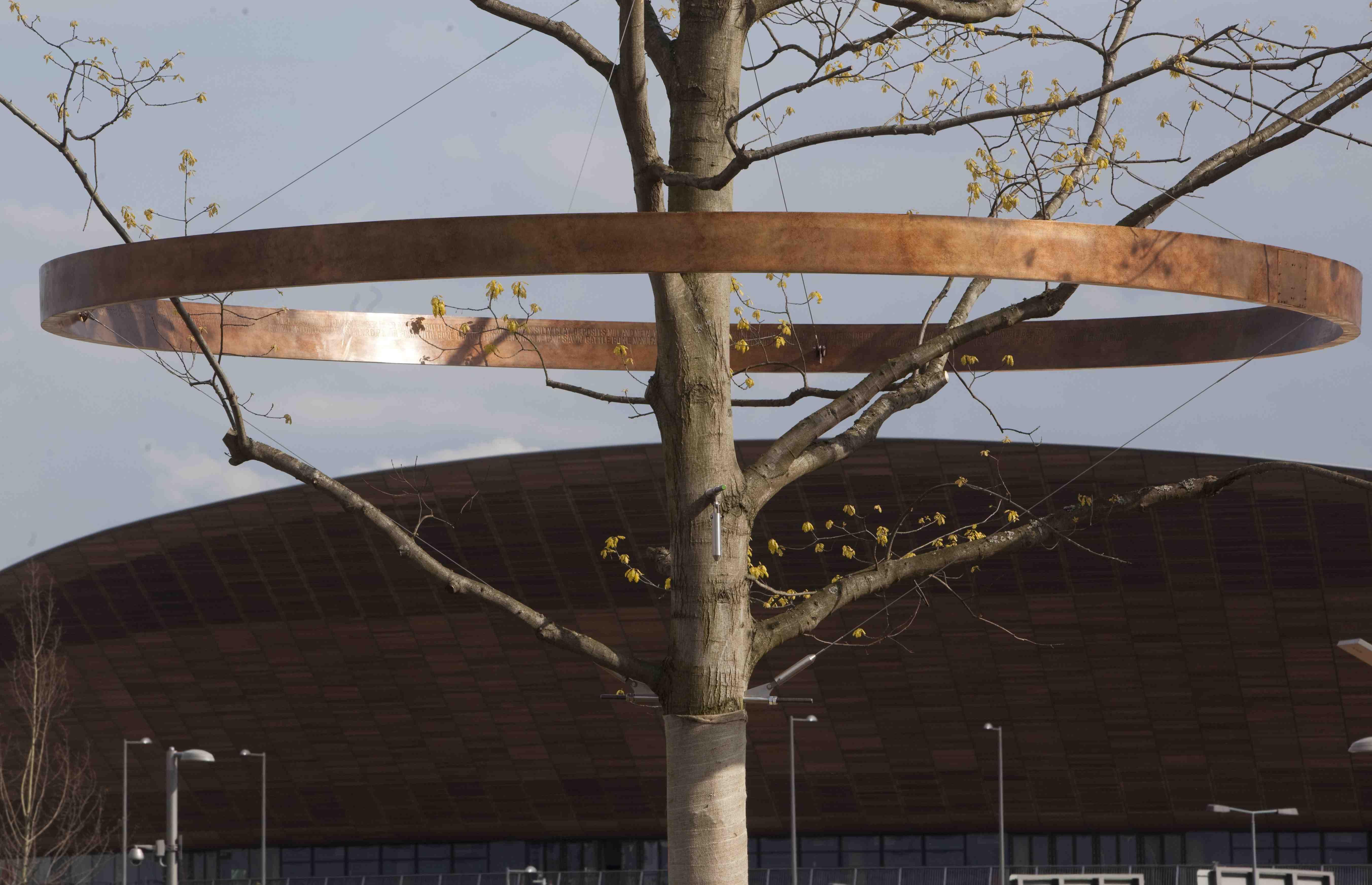 Marker trees_London_2012_April_27