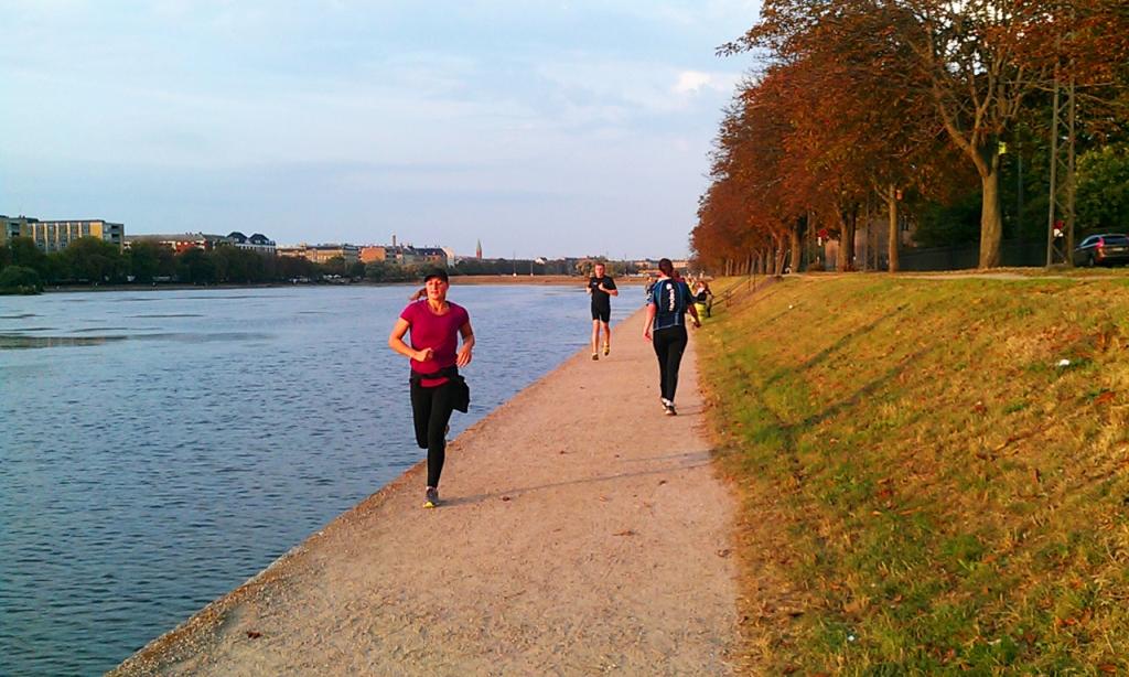 Copenhagen runners