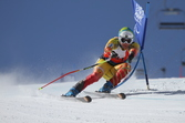 IPC Alpine skiing