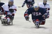 USA ice sledge hockey