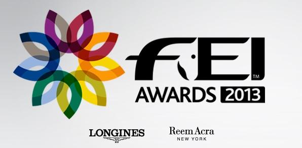 FEI awards 2013