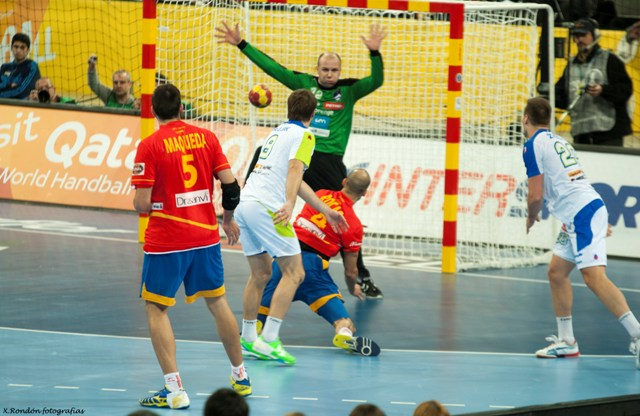 World Handball Championships 2013