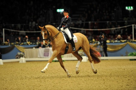 Gold medal winning horse Mistral Højris is set to retire at the end of this year ©Revolution Sports