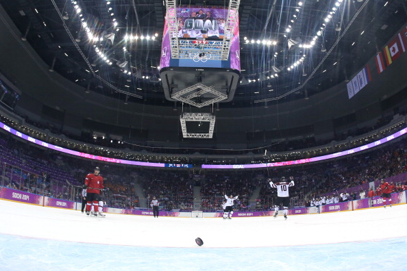 The Bolshoy Arena is just one of many Sochi 2014 venues that Dow have been involved in ©Getty Images