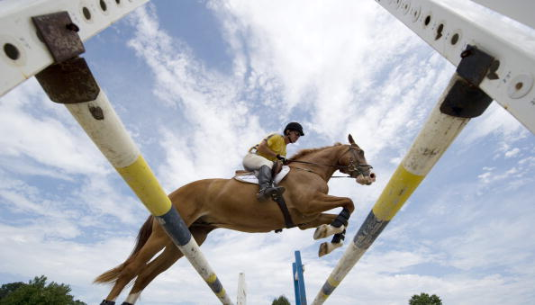 An unprecedented number of countries are expected to compete in the next edition of the World Equestrian Games in Normandy later this year ©Normandy 2014