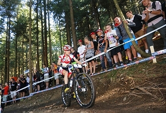 Hardwood Ski and Bike will host the mountain bike events at the Toronto 2015 Pan American Games ©AFP/Getty Images