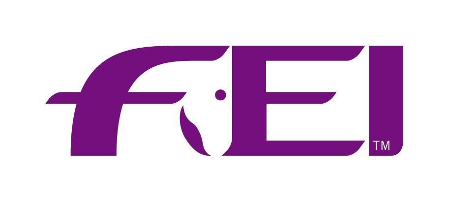 An Independent Advisory Committee has been set up to preserve the integrity of the Presidential election process ©FEI