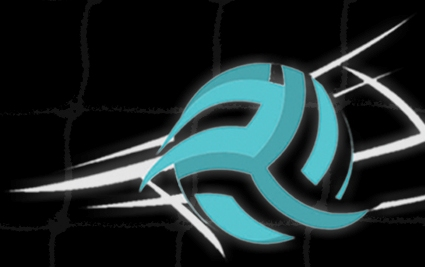 Iran Volleyball Federation