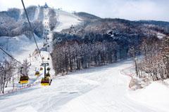 Bokwang Phoenix Park will host snowboarding and freestyle skiing at Pyeongchang 2018 ©Bokwang Phoenix Park
